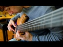 THE LAST OF THE MOHICANS - Fretless Fretted Bass - Zander Zon