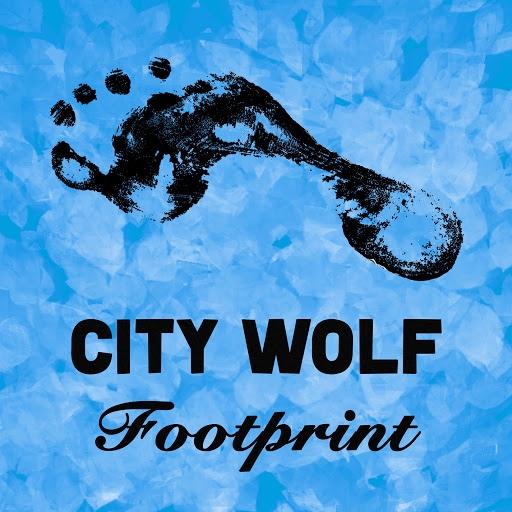 GOA альбом Footprint
