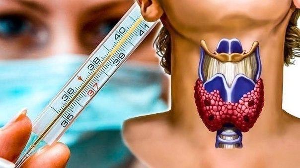 Чтобы проверить свою щитовидку, нужен только градусник