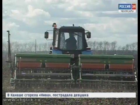 Сельчане республики завершают сев яровых, активно сажают хмель и картофель
