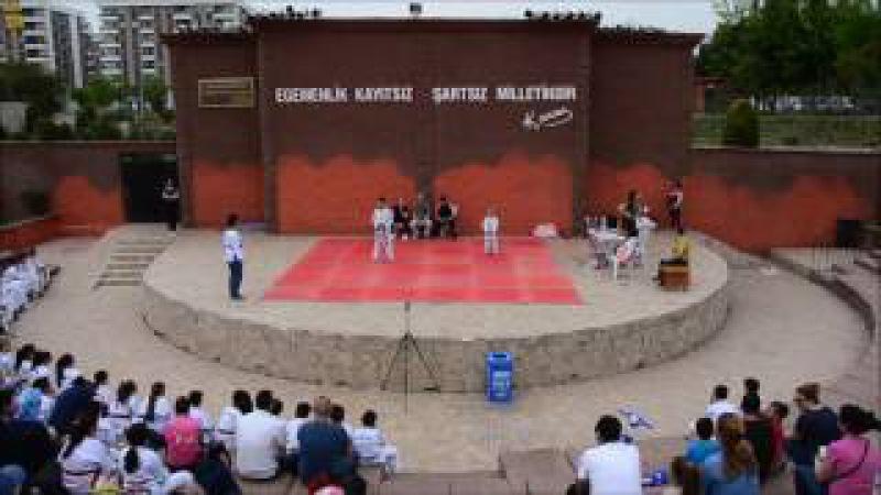 Taekwondo Poomsae, Taegeuk Form 3-5 (brother and sister), Antalya, Turkey - YouTube