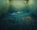 Молодая корейская фотохудожница Джи Янг Ли творит волшебство в своей крохотной студии в Се…