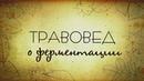 Травовед О ферментации Рассказывает Моряков Сергей Викторович