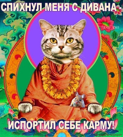 Кирилл Цветков, 18 июня , Ярославль, id190533382