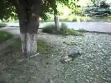 18+ Краматорск. Разорванные ЛЮДИ в клочья,остатки тел,смерть мирных людей после обстрела 16 июня.