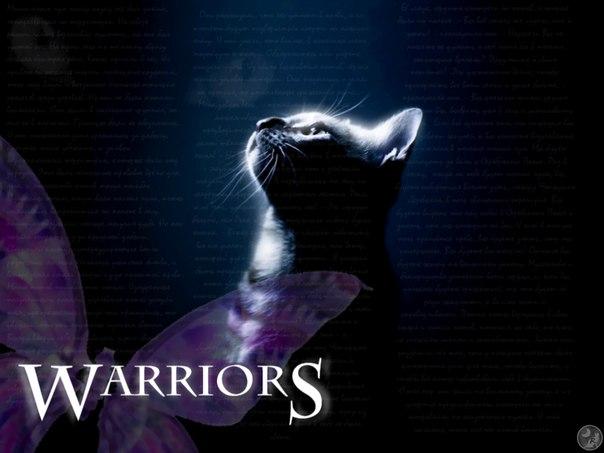 Коты-Воители: на тропе войны