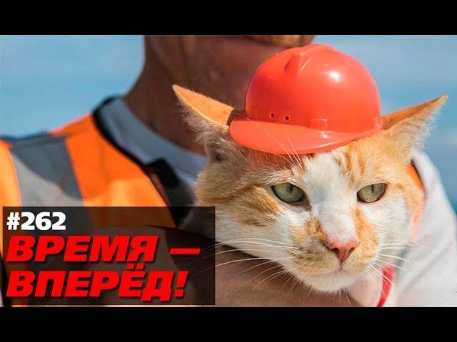 Вот как Крымский мост повлиял на Россию. Кто-то ждал другого? (Время-вперёд! 262)