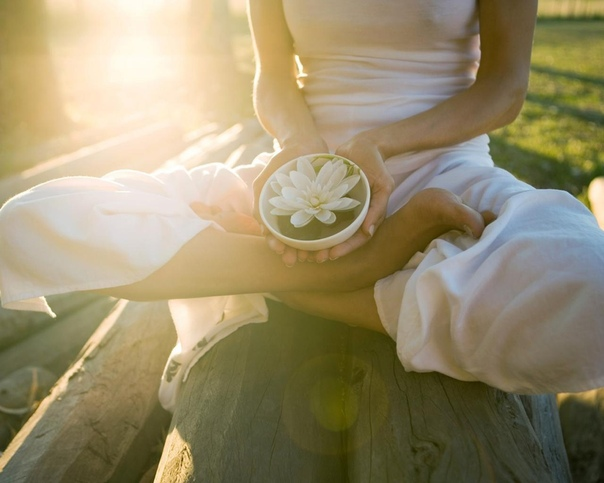 Основной закон мироздания — это обмен энергиями. И самая главная энергия — это энергия Божественной Любви, на основе которой все поддерживается и взаимосвязывается во Вселенной. Эта энергия связывает Бога со всеми живыми существами. И когда она входит в с
