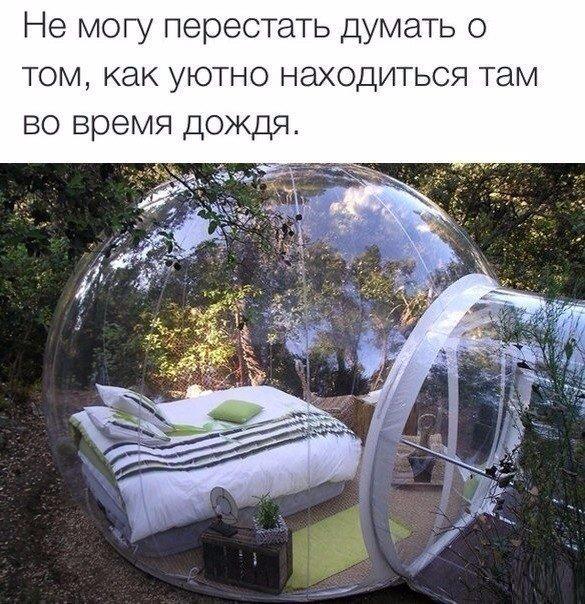 https://pp.vk.me/c543106/v543106140/16b4a/m1XCj-1PyRw.jpg