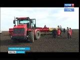Посевная началась в южных районах Иркутской области