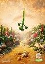 Реклама производителей свежих овощей Tenderstem…