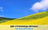 Дорожная песня (Любовь и разлука), Камбурова Елена,