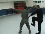 НИНДЗЮЦУ: Практика защиты / Ninjutsu Self Defence