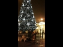 Дед Мороз в Петербуре-Я маленькая лошадка)) idcandy