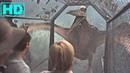 Jurassic Park 3 Pterosaur Saldırısı HD