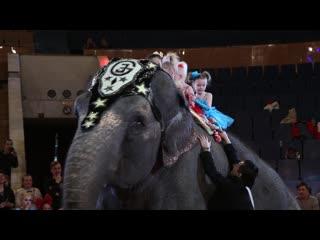 Сюрприз на награждении Всероссийского фестиваля-конкурса циркового искусства «Алле-Ап» (29 апреля)