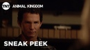 Animal Kingdom Incoming - Season 3, Ep. 8 SNEAK PEEK TNT