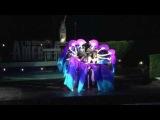 Fan veils _ Fouad bellydance troupe