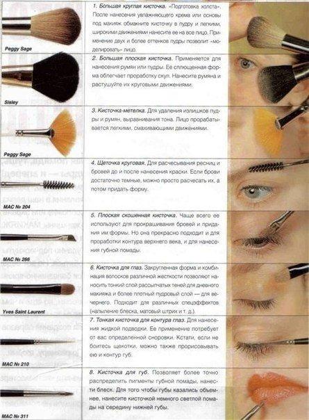 Все кисточки для макияжа и описание