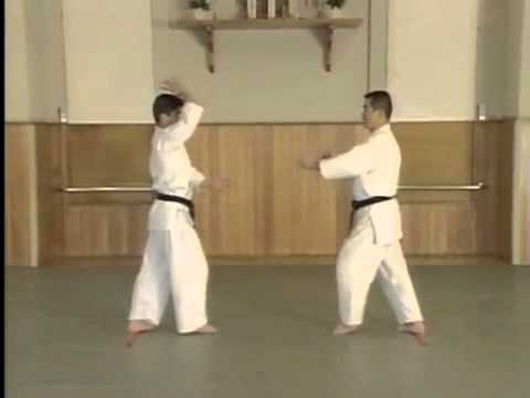 Shomen Uchi Sankajo Osae 2