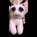 _xenia_gotsman_ video