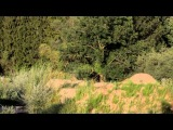 FIAT Nine Knights MTB 2013 | Wanna be a Knight | Magnus Baumann