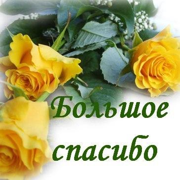 https://pp.vk.me/c7008/v7008955/5aa76/E-SyLEVcO10.jpg