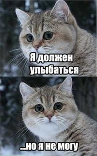 Витольд Мещеряков