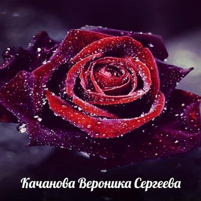Вераника Качанова, 21 августа 1993, Винница, id228349813