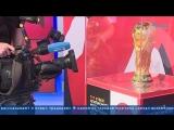 Кубок чемпионата мира выставлен на Крестовском острове