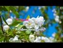 Караоке - Анна Герман - Один раз в год сады цветут