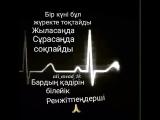 VID_37120308_011016_012.mp4