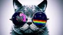 NYAN CAT HIGH TRIPPY MINIMAL TECHNO HOUSE MIX 2018