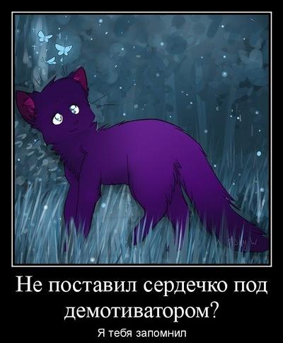 Диана Никанова, 30 июня , Апатиты, id133803353