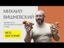 Прямой эфир Мослекторий Ядовитые и галлюциногенные грибы Михаил Вишневский