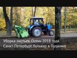 Как убирают листья в Санкт-Петербурге и Нарве
