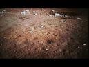La chine se pose sur la lune (14.12.2013)