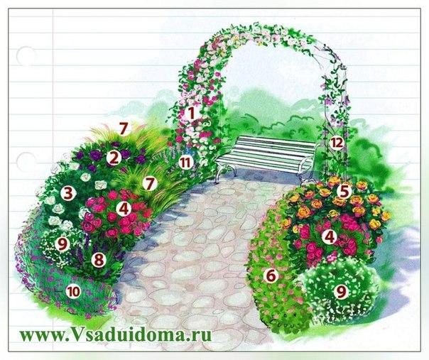 Готовые схемы цветников, клумб