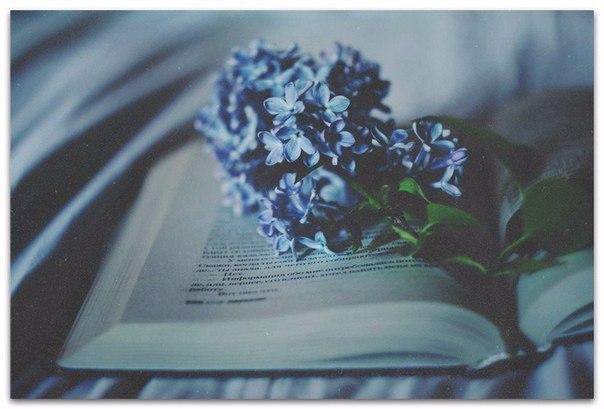 Фото №423480590 со страницы Екатерины Смирновой