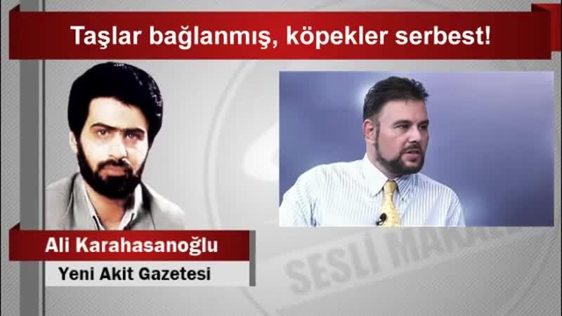 Ali Karahasanoğlu Taşlar bağlanmış, köpekler serbest!