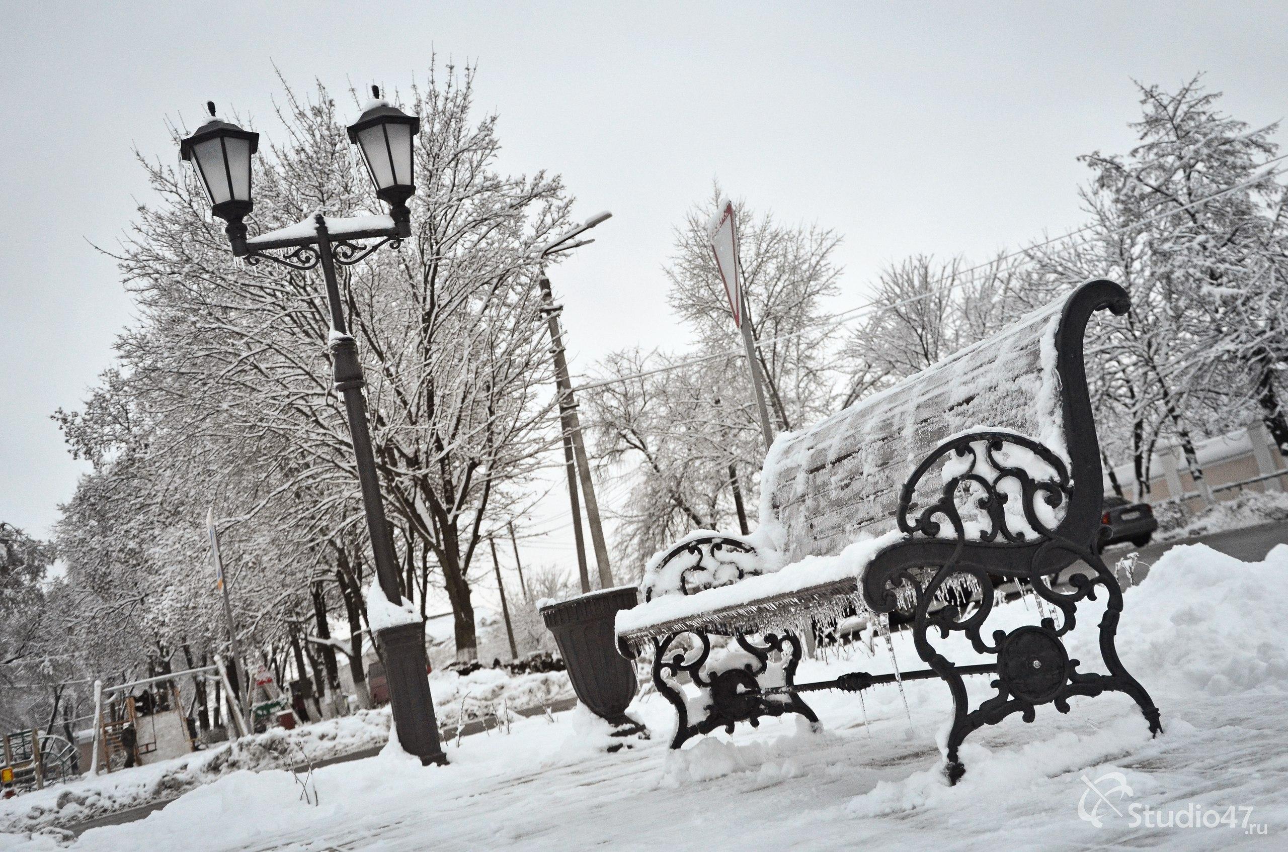 Скамейка и фонарь на площади Революции в Борисоглебске