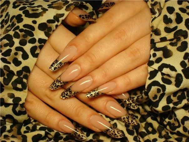 Картинки амбре ногти - 4