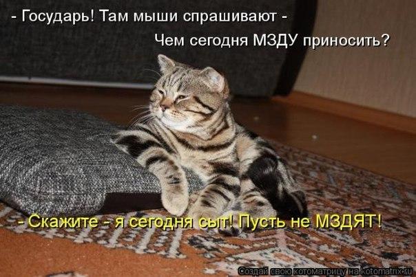 http://cs319727.userapi.com/v319727271/2f14/3SO4_8etZqs.jpg