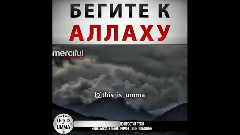 Umma.muhammada.tvBi_tX4-hRx5.mp4
