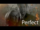X- Files _ Mulder and Scully _Perfect