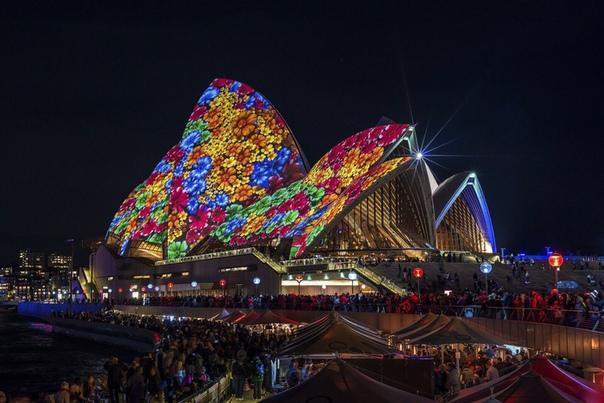 Сиднейский оперный театр во время фестиваля Яркий Сидней (Vivid Sydney).