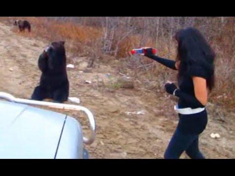 Three Bears (Медведи попрашайки) второй день