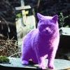 velvet_cat_on_a_grave