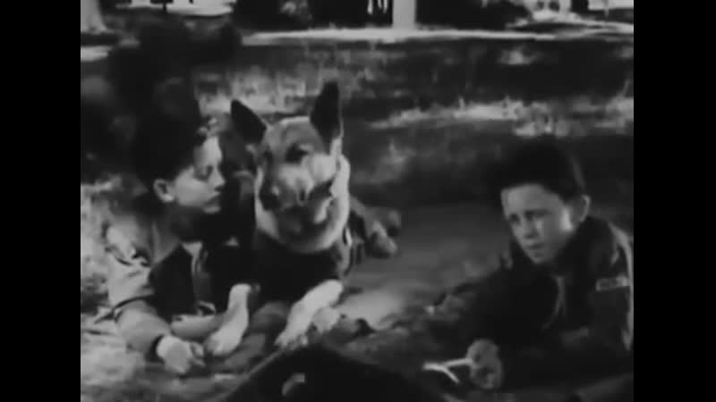Danny Boy 1946