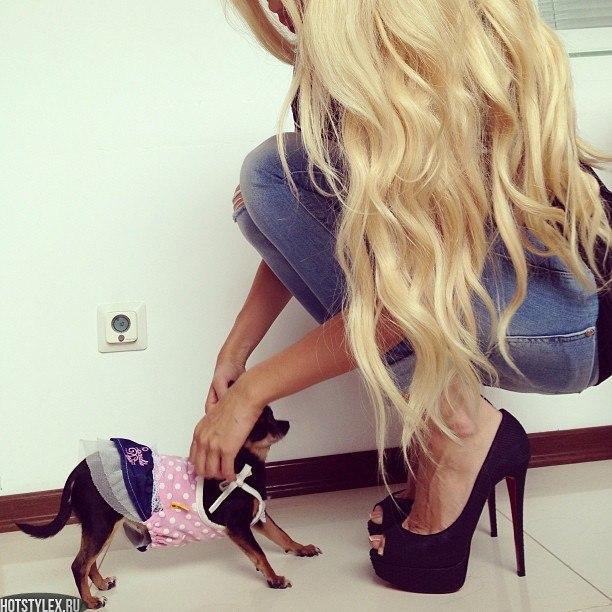 фото блондинки на аву: hotstylex.ru/stilnye-foto/stilnye-krasivye-devushki/3197-foto...